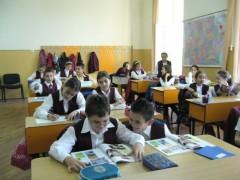 eleviscoala
